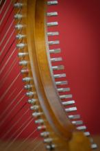 Gothic harp - Photo: André Wagenzik